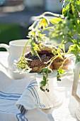 Geranie und Wiesenkerbel vor Gebäck und Kännchen auf Gartentisch