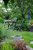 Weathered wooden table and chairs under pear tree in summer garden