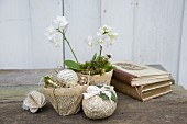 Easter arrangement; white orchid in papier mâché pot hand crafted from pages of old books, decorated egg and books