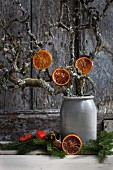 Caramelised slices of blood orange hanging from pear tree branches in stoneware pot
