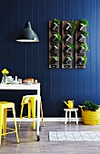 Kitchen herbs planted in storage jars fixed to three wooden boards hung on blue wood-panelled wall in dining area - upcyling