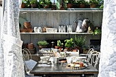 Breakfast table in front of shelves of potted herbs and garden utensils in sunny greenhouse