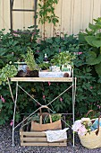 Gardening utensils on potting table next to wicker basket on gravel floor outdoors