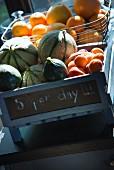 Beschriftete Holzkiste und Drahtkorb mit Melonen, Aprikosen und Orangen
