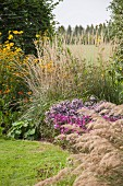 Ornamental grasses and flowering plants in spacious garden