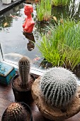 View past cacti and through terrace window of red bust of woman in koi pond