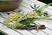 White lupins and rusty secateurs on white wooden table