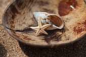 Seashell and dried starfish in wooden bowl on sandy beach