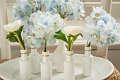 Hydrangeas and buttercups in small, white painted vases and bottles