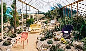 Various colourful outdoor furniture in greenhouse with large cacti