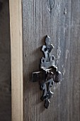 Wrought iron fitting on wooden door