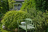 Green-painted wooden bench amongst bushes in summery garden