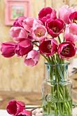 Tulipa 'Don Juan' and 'Rosalie' in glass vase