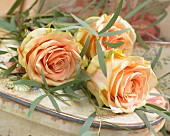 Apricot roses and eucalyptus branches