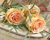 Apricotfarbene Rosenblüten mit Eukalyptuszweigen auf herzförmiger Schachtel liegend