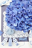 Blue hydrangea (close-up)
