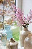 Astilbe flowers in vase