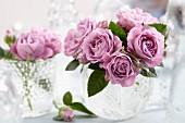 Lilafarbene Rosen in Glasvasen