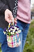 Viola cornuta 'Petit' in fabric bag