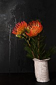Exotic protea flowers in white china vase