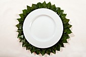White plate with hand-crafted place mat made from felt and ivy leaves