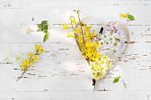 Frühlingsblumen in Dekoherz aus Spanholz geformt auf Holzuntergrund