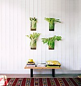 Green plants hung on wooden wall