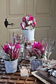 Romantic flower arrangements of deep pink cyclamen, heather and honesty in vases wrapped in birch bark
