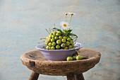 Fliederfarbene Schüssel mit Gesteck aus grünen Äpfeln und Margeriten