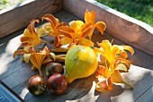 Squash and tomatoes amongst yellow lily blooms in wooden crate