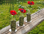 Row of anemones in cylindrical glass vases wrapped in herbs on wooden board