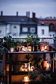 Pflanztisch auf abendlicher Dachterrasse stimmungsvoll dekoriert mit Pflanzen und Windlichtern