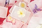 Eiswürfel mit eingefrorenen Blüten