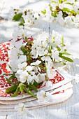 Kirschbaumblüten auf rot-weißem Tuch auf Holztisch im Freien