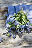 Vergissmeinnicht auf blauem Tuch und verwitterter Holzuntergrund im Freien