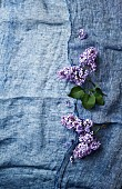 Lila Flieder auf blauem Leinentuch