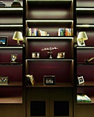 Dark wood shelving with integrated light strips and traditional sconce lamps