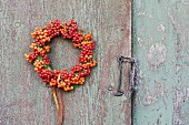 Rowan berry wreath on weathered wooden wall