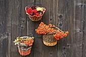 An Holzwand aufgehängte Körbchen mit Beeren und Blumen gefüllt