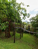 Two children playing in tree house with suspended bridge, tree-trunk platforms and spiral stairs in garden