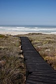 Long boardwalk leading to sea