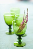 Sprigs of heather in green, stemmed glasses