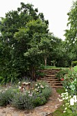 Meandering stone path in gardens