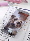Photo of dog printed on adhesive film and stuck on mobile phone