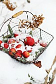 Wire basket of apples in snow