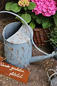 Zinc watering can in front of mophead hydrangea and motto on rusty sign