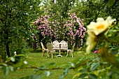 Antique-style table and chairs in front of luxuriantly flowering rose bush in garden