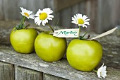 Green apples with ox-eye daisies and name cards for decorating a dining table