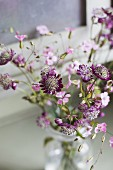 Astrantia and delicate pink flowers in glass of water