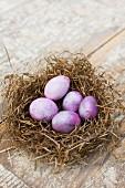 Easter eggs dyed using cochineal in nest of hay